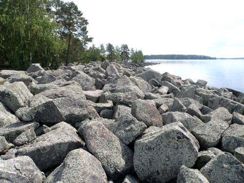 Pirunpelto verkkokauppaan, Tapio Mannine