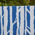 AARNIMETSÄ luomujoustocollege, sinivalkoinen